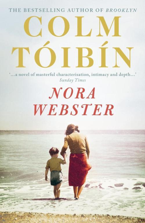 Nora Webster by Colm Tóibín published by Viking